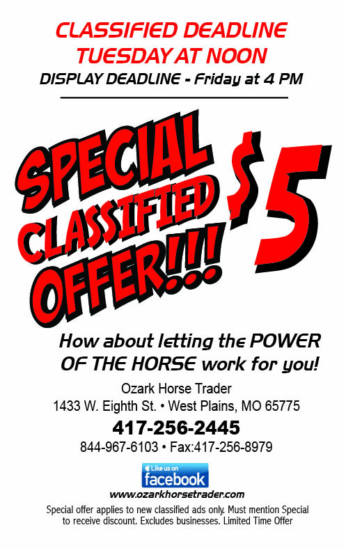 Horse Trader Sept clsfd special eighth page 9-7-17
