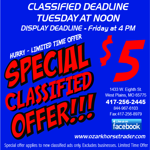 $5 classified special